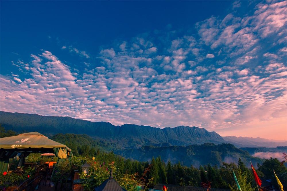 景区规划_景区策划_记熊猫之家雅安碧峰峡