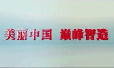 2017巅峰智业宣传片